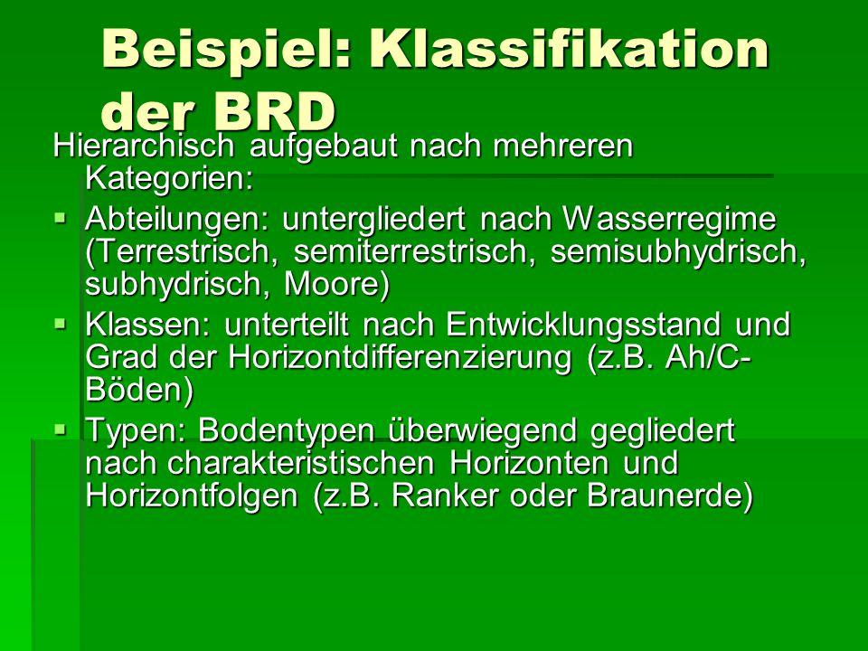 Beispiel: Klassifikation der BRD