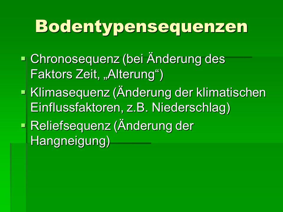 """Bodentypensequenzen Chronosequenz (bei Änderung des Faktors Zeit, """"Alterung )"""