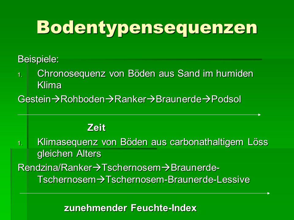 Bodentypensequenzen Beispiele: