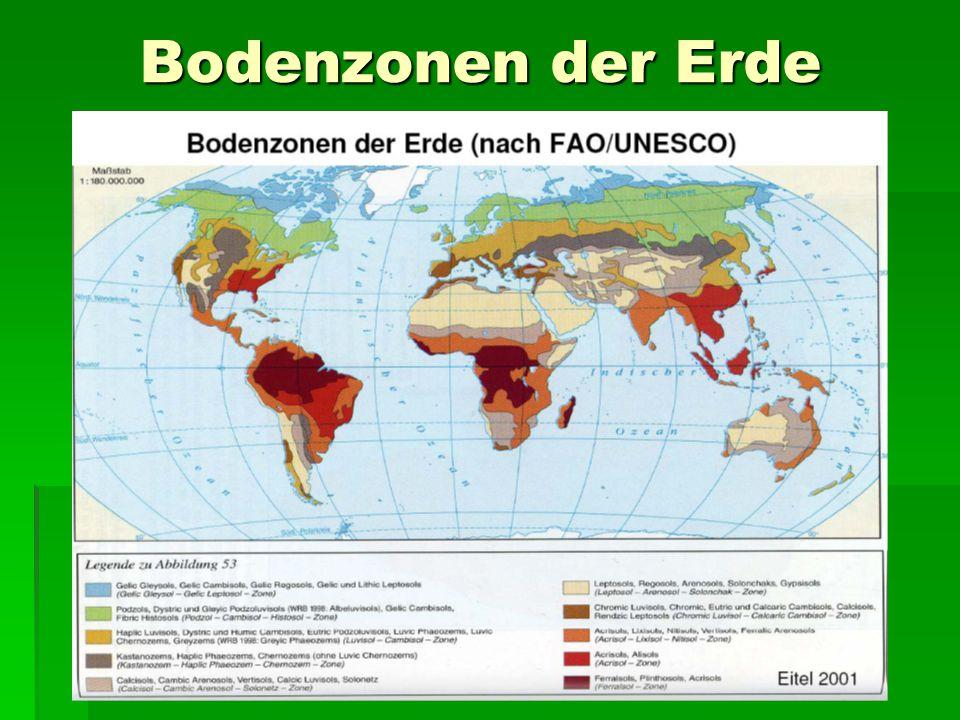 Bodenzonen der Erde