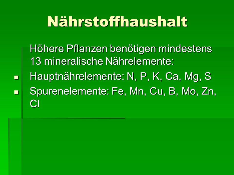 Nährstoffhaushalt Höhere Pflanzen benötigen mindestens 13 mineralische Nährelemente: Hauptnährelemente: N, P, K, Ca, Mg, S.