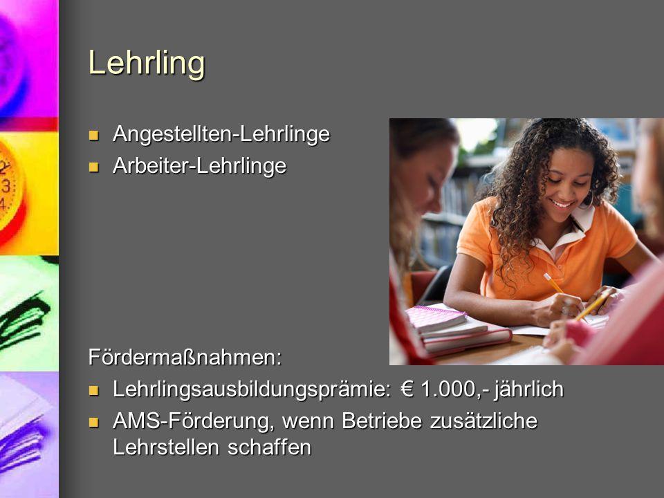Lehrling Angestellten-Lehrlinge Arbeiter-Lehrlinge Fördermaßnahmen: