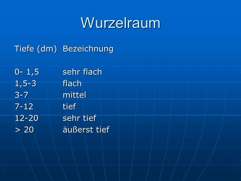Wurzelraum Tiefe (dm) Bezeichnung 0- 1,5 sehr flach 1,5-3 flach