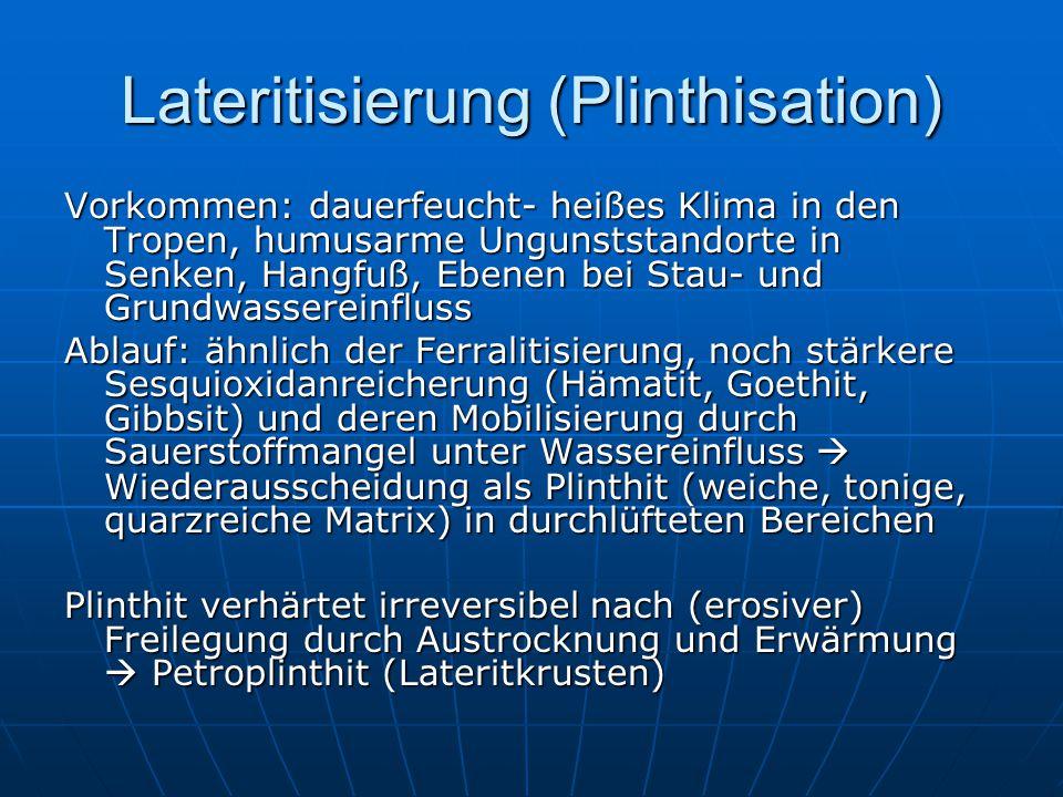 Lateritisierung (Plinthisation)