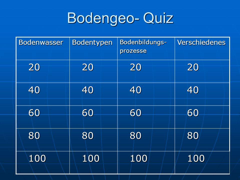 Bodengeo- Quiz 20 40 60 80 100 Bodenwasser Bodentypen Verschiedenes