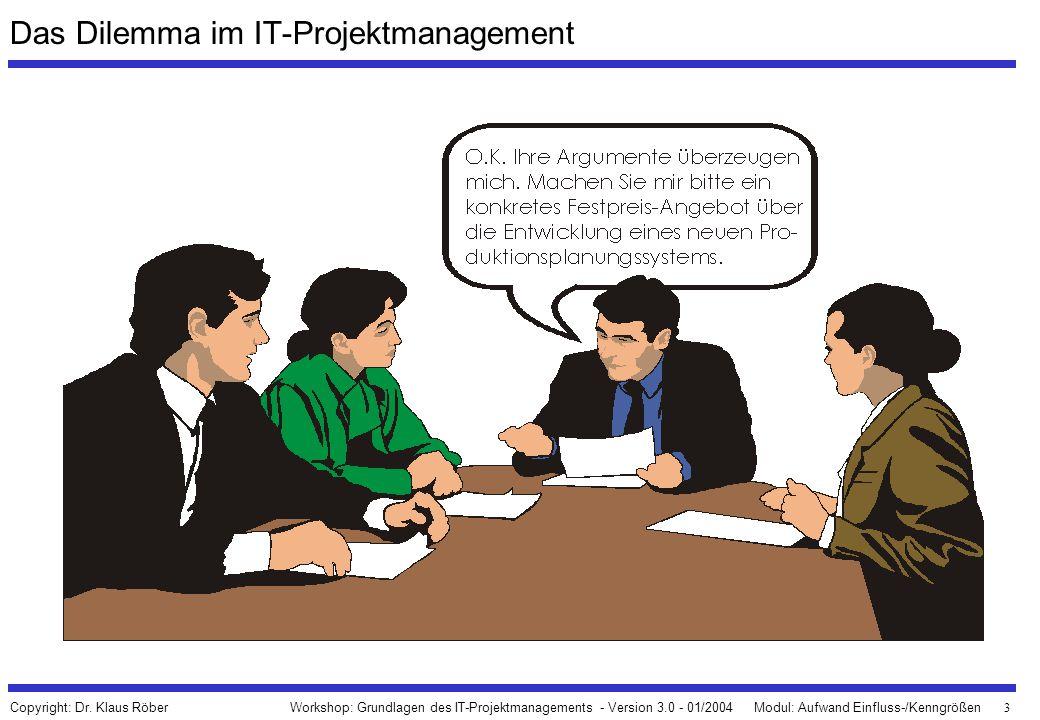 Das Dilemma im IT-Projektmanagement