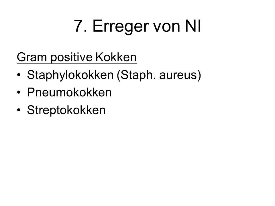 7. Erreger von NI Gram positive Kokken Staphylokokken (Staph. aureus)