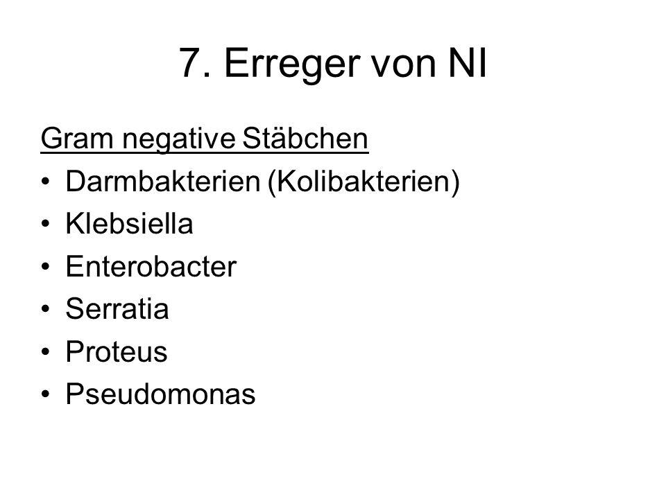 7. Erreger von NI Gram negative Stäbchen Darmbakterien (Kolibakterien)