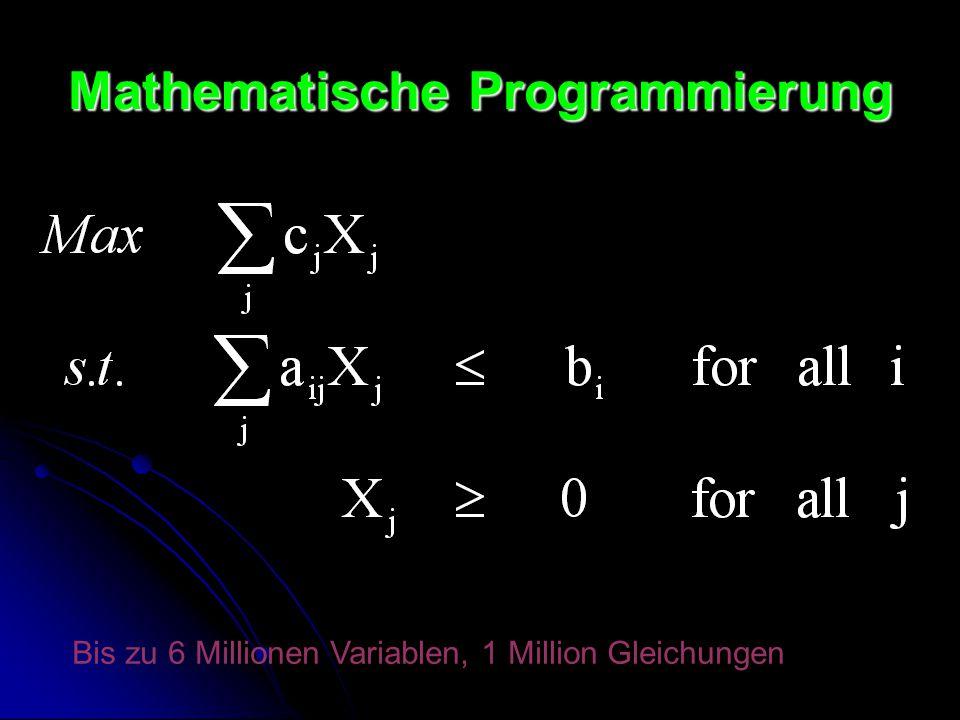 Mathematische Programmierung