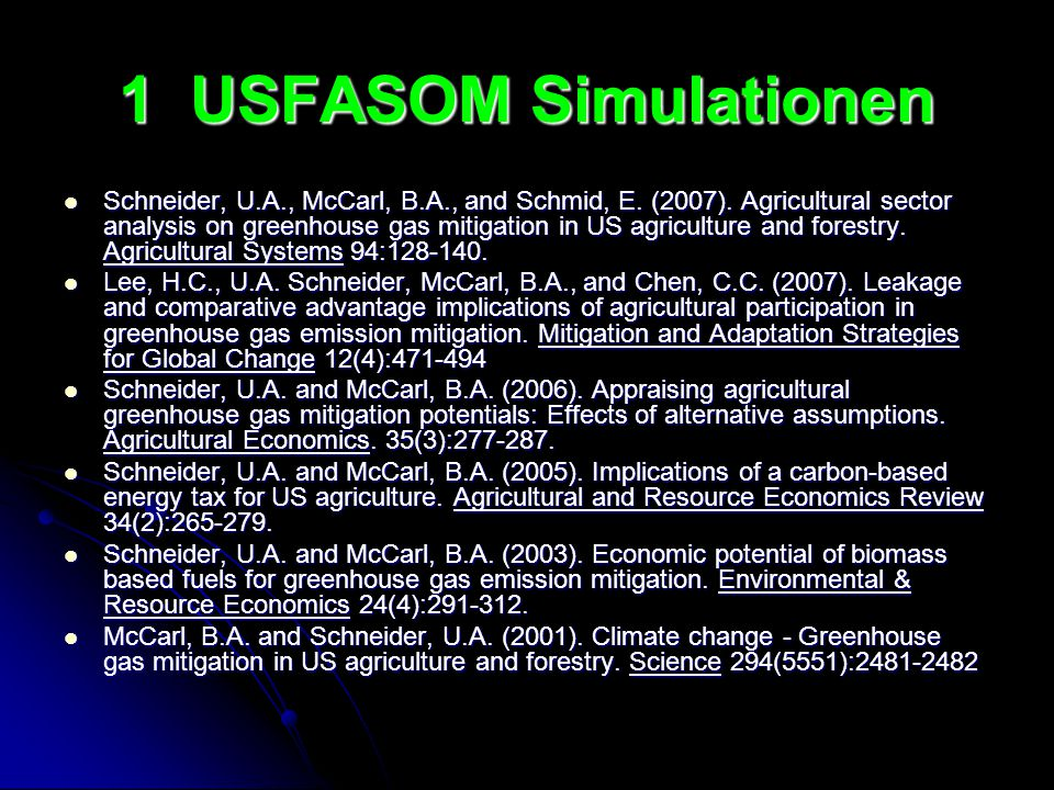 1 USFASOM Simulationen