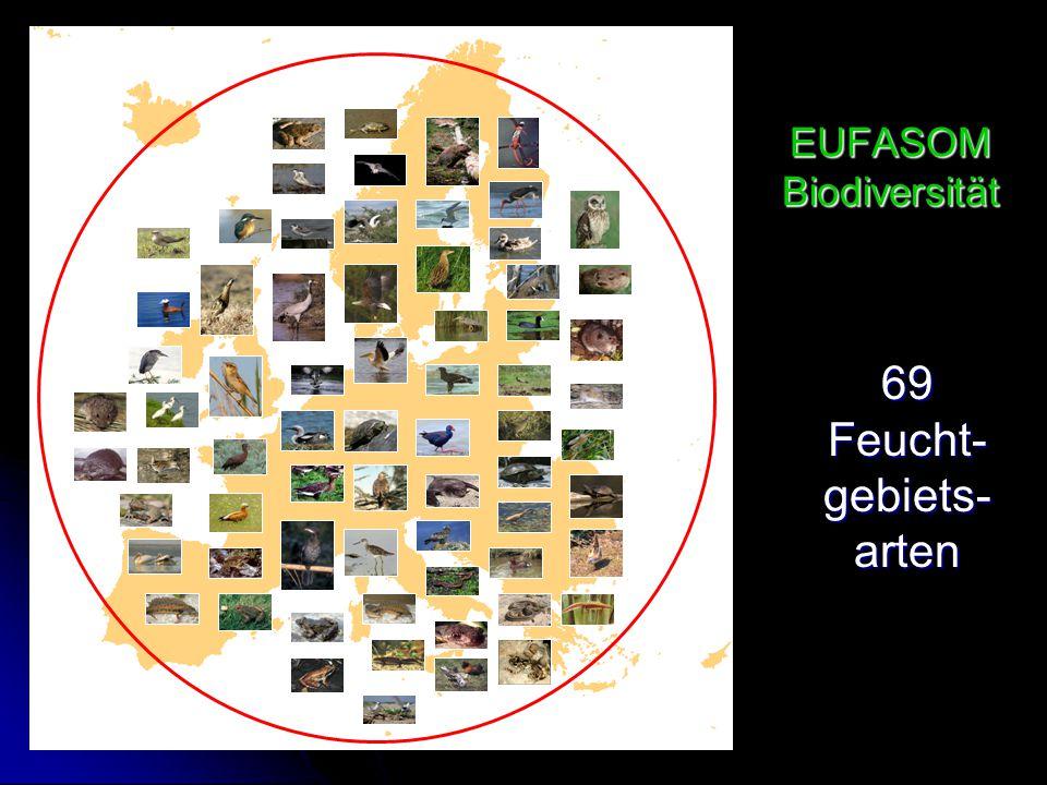 EUFASOM Biodiversität