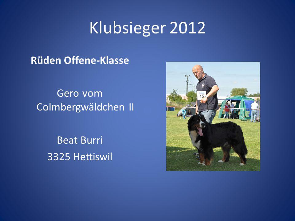 Klubsieger 2012 Rüden Offene-Klasse Gero vom Colmbergwäldchen II Beat Burri 3325 Hettiswil Preis: Zinnkanne mit Gravur.