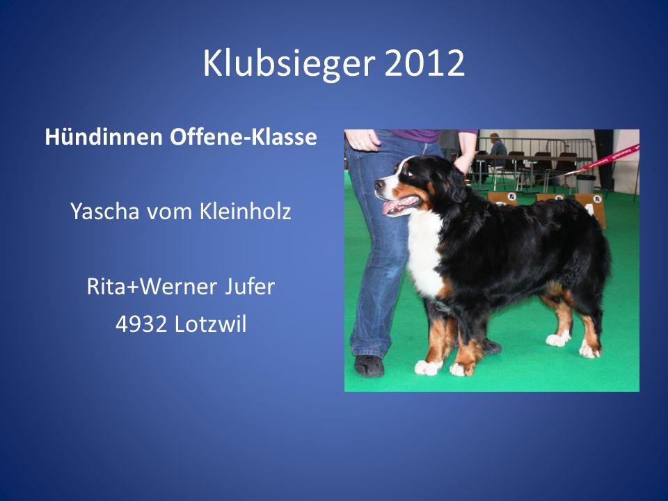 Klubsieger 2012 Hündinnen Offene-Klasse Yascha vom Kleinholz Rita+Werner Jufer 4932 Lotzwil Preis: Zinnkanne mit Gravur.