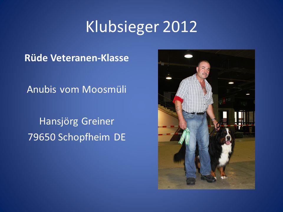 Klubsieger 2012 Rüde Veteranen-Klasse Anubis vom Moosmüli Hansjörg Greiner 79650 Schopfheim DE Preis: kleine Wappenscheibe.