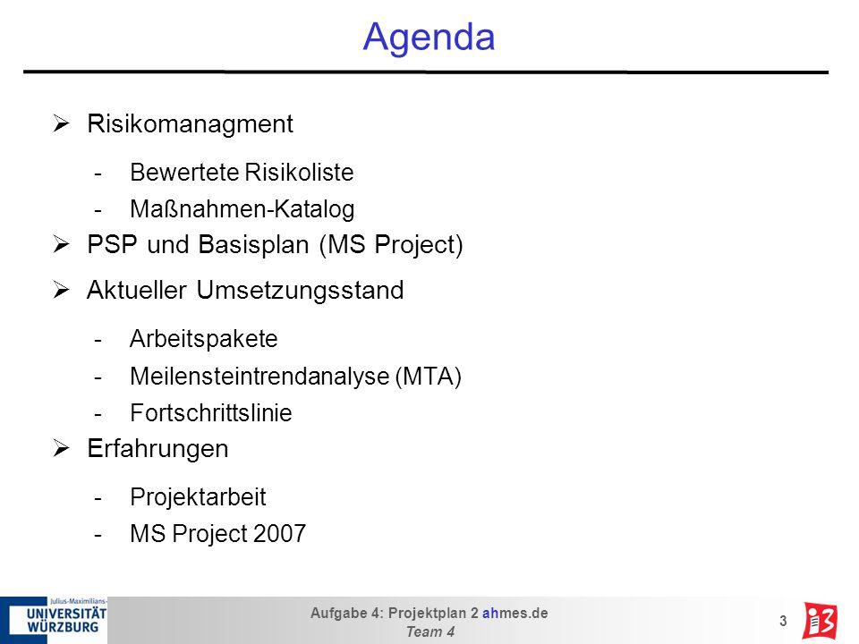 Agenda Risikomanagment PSP und Basisplan (MS Project)