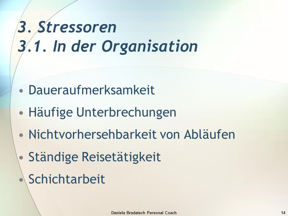 3. Stressoren 3.1. In der Organisation