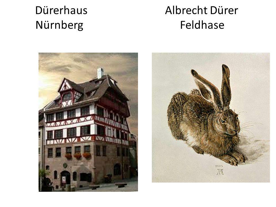Dürerhaus Albrecht Dürer Nürnberg Feldhase