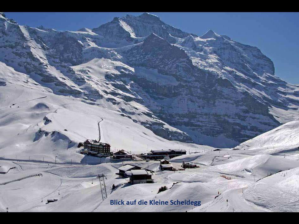 Blick auf die Kleine Scheidegg