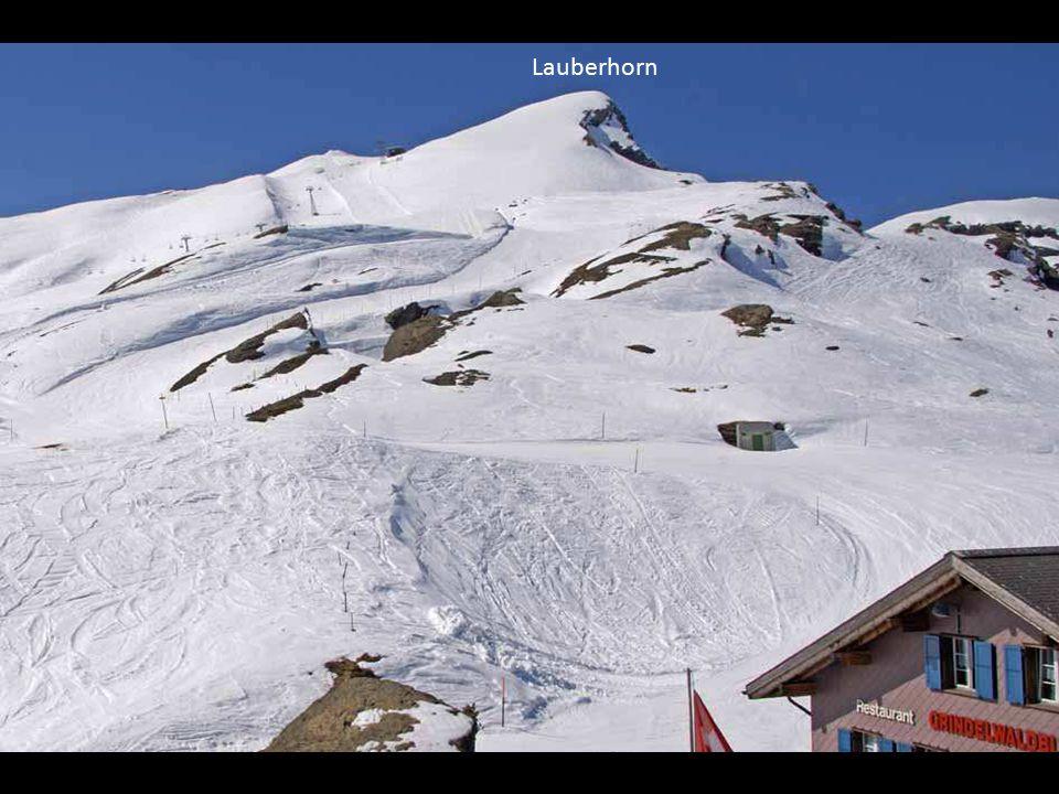 Lauberhorn