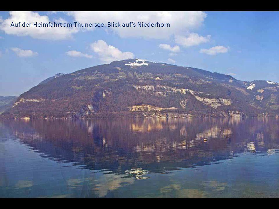 Auf der Heimfahrt am Thunersee: Blick auf's Niederhorn