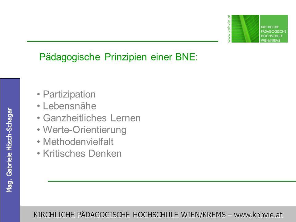 Pädagogische Prinzipien einer BNE: