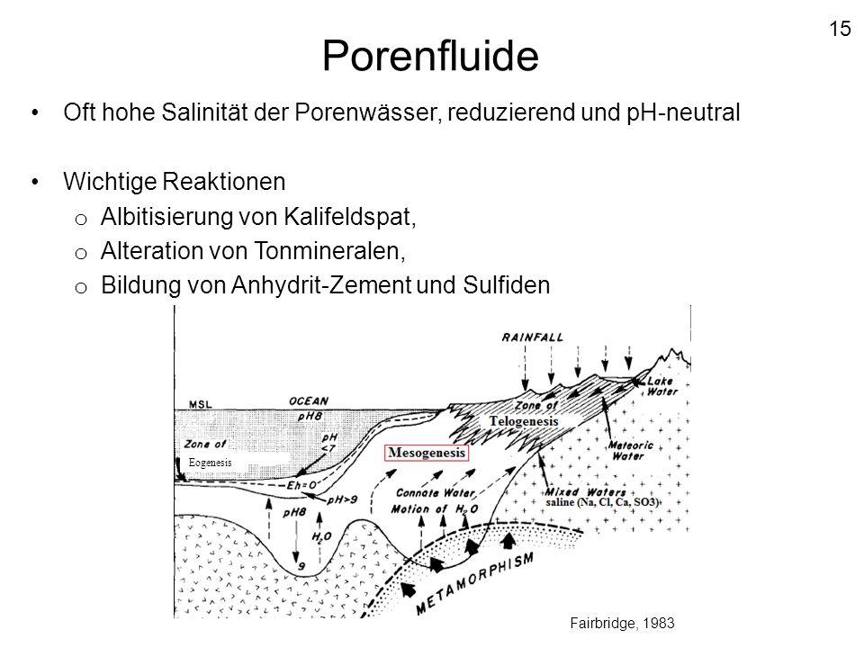 15 Porenfluide. Oft hohe Salinität der Porenwässer, reduzierend und pH-neutral. Wichtige Reaktionen.