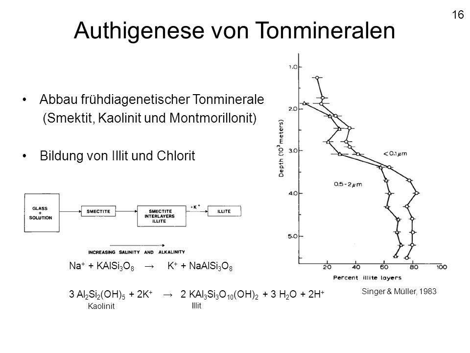 Authigenese von Tonmineralen