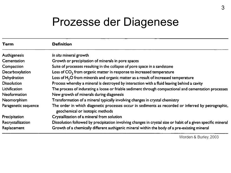Prozesse der Diagenese
