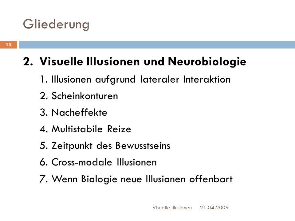 Gliederung 2. Visuelle Illusionen und Neurobiologie