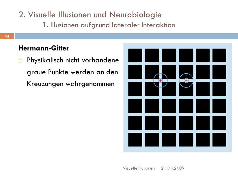 2. Visuelle Illusionen und Neurobiologie. 1