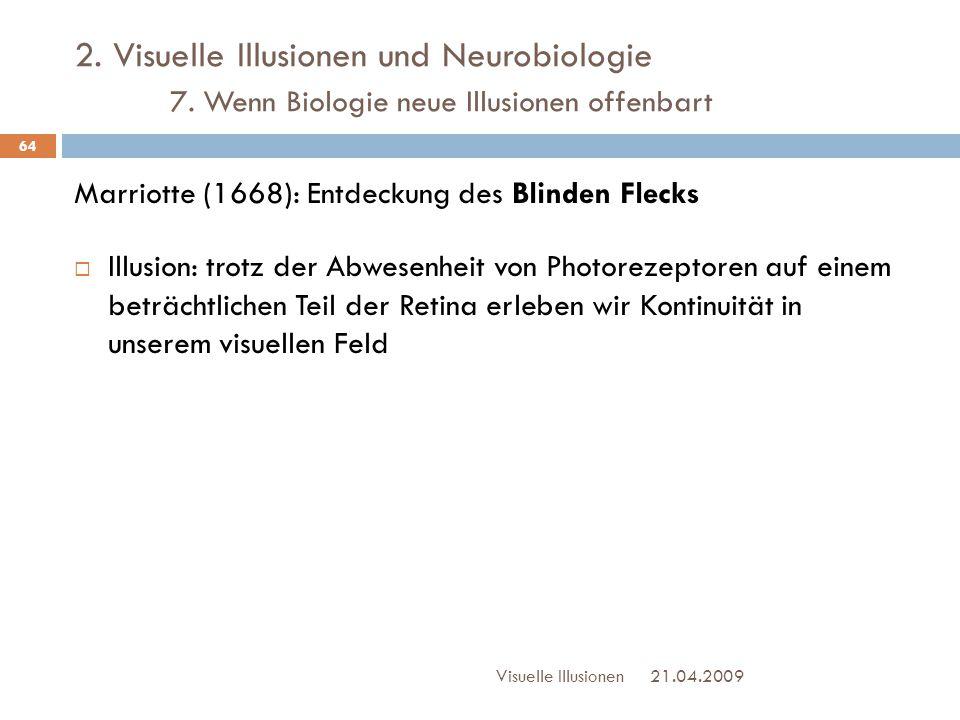 2. Visuelle Illusionen und Neurobiologie. 7