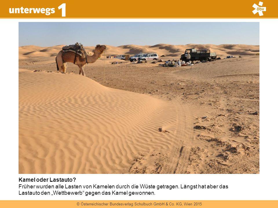 Kamel oder Lastauto