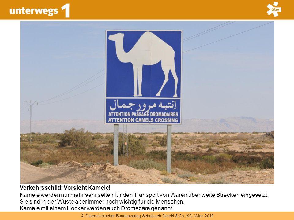 Verkehrsschild: Vorsicht Kamele!