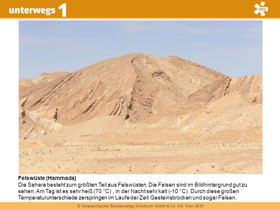 Felswüste (Hammada)