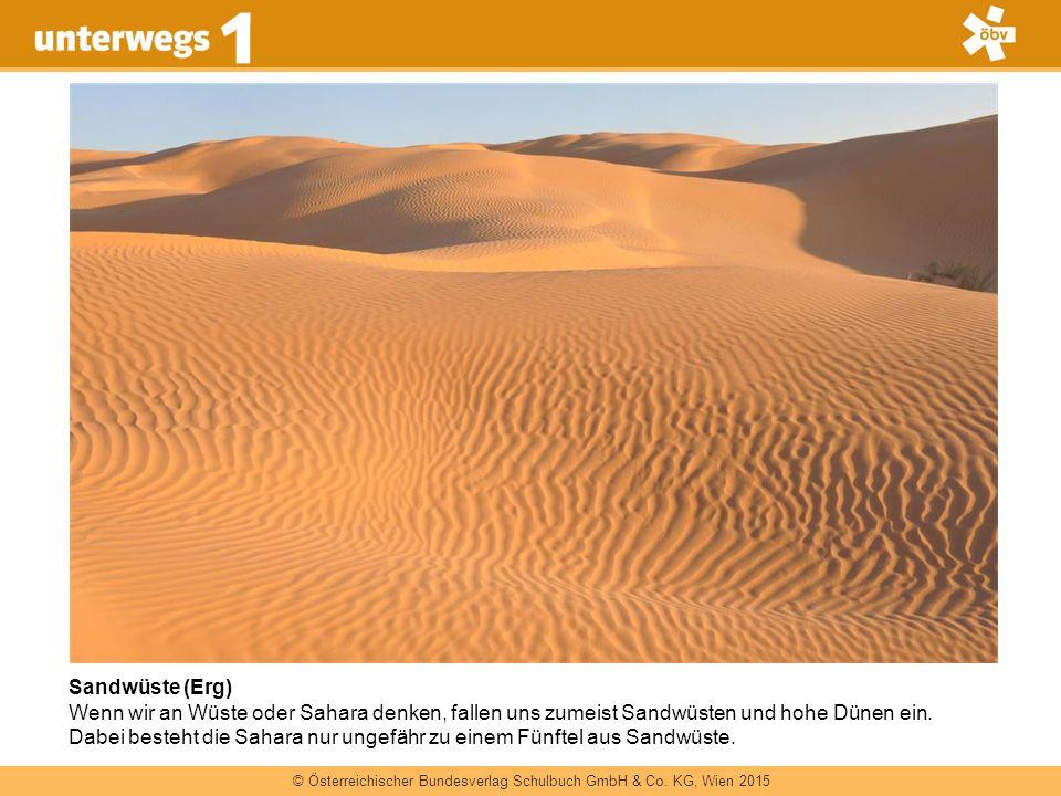 Sandwüste (Erg)