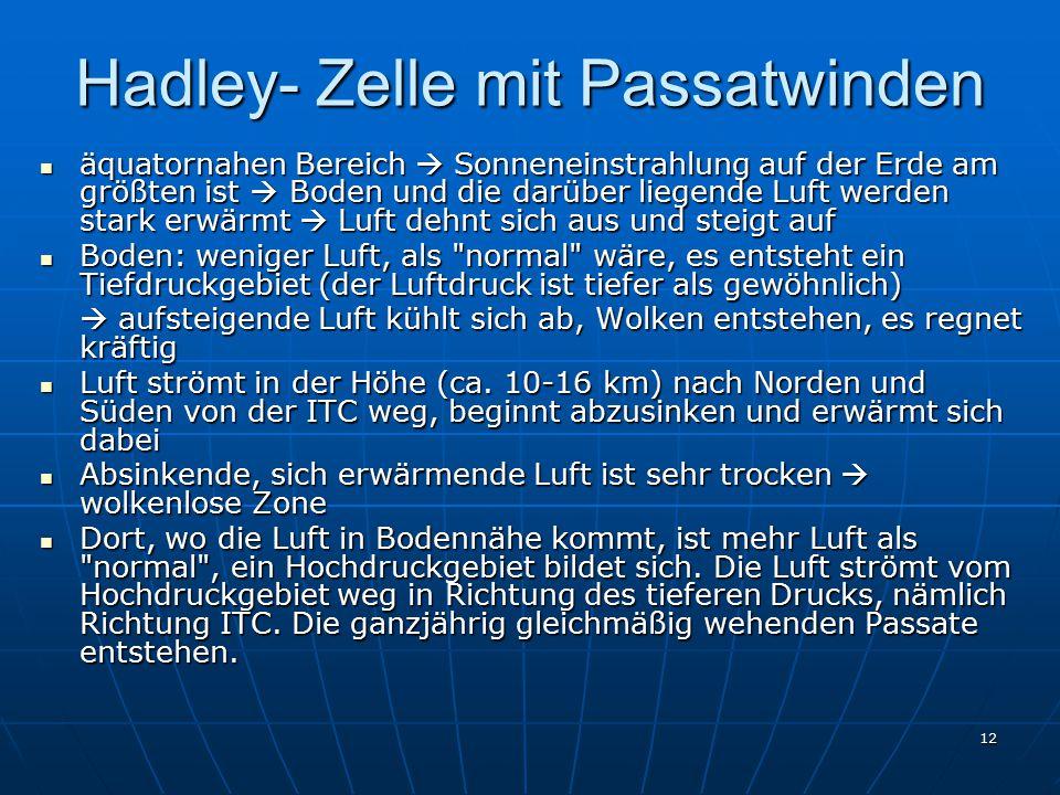 Hadley- Zelle mit Passatwinden