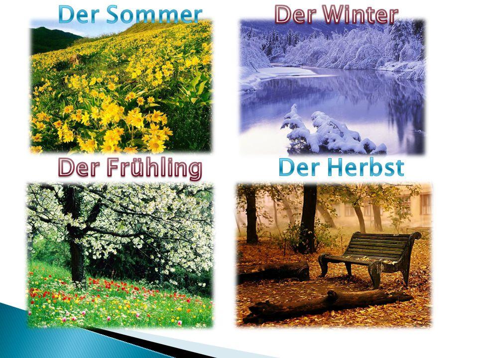 Der Sommer Der Winter Der Frühling Der Herbst