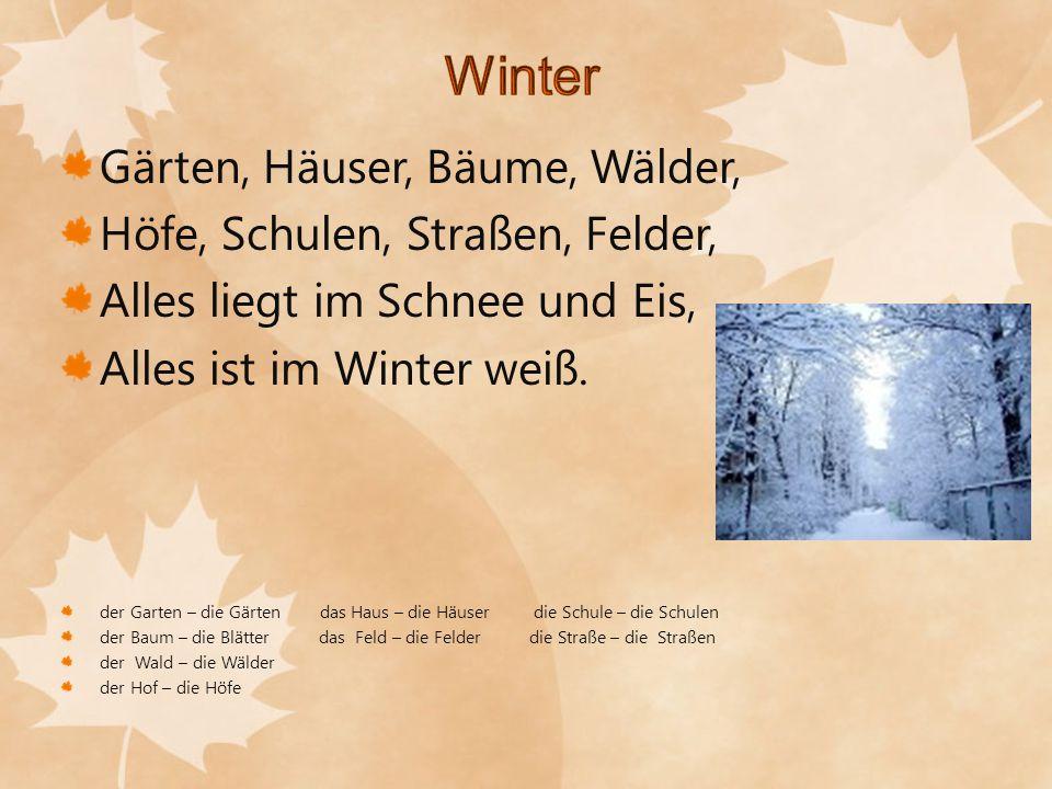 Winter Gärten, Häuser, Bäume, Wälder, Höfe, Schulen, Straßen, Felder,