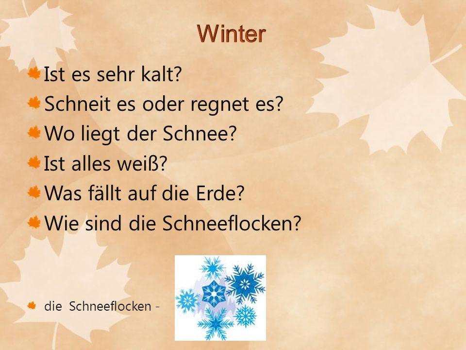 Winter Ist es sehr kalt Schneit es oder regnet es