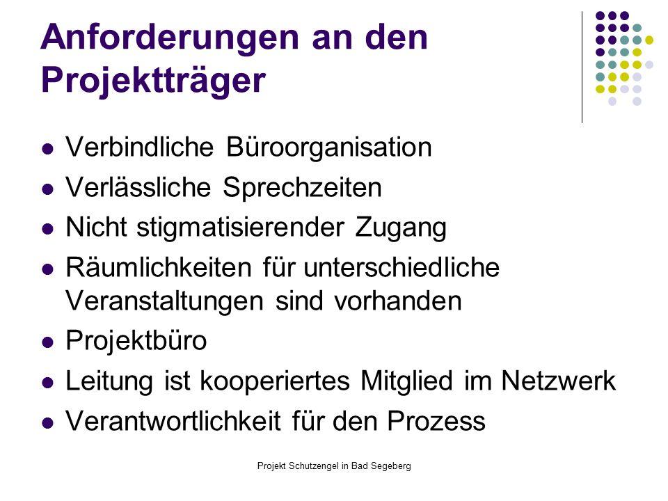 Anforderungen an den Projektträger