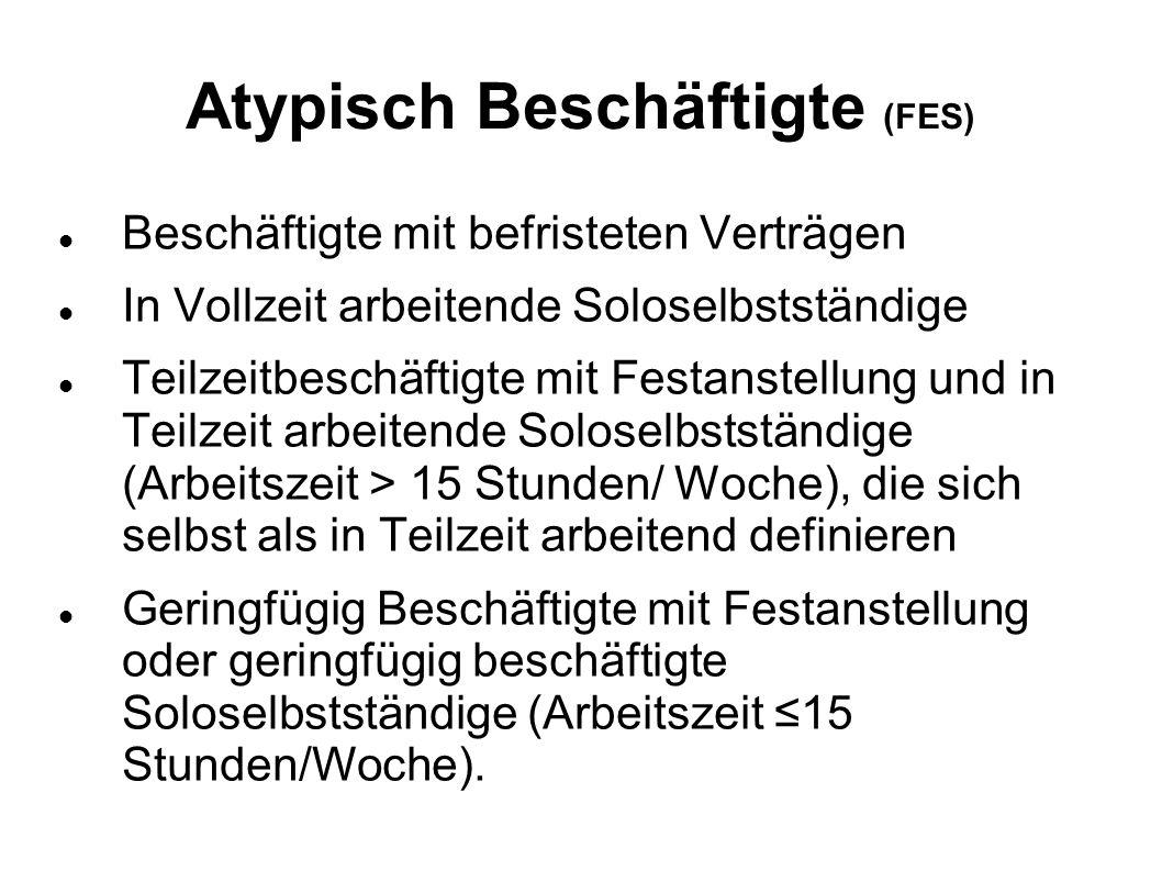 Atypisch Beschäftigte (FES)