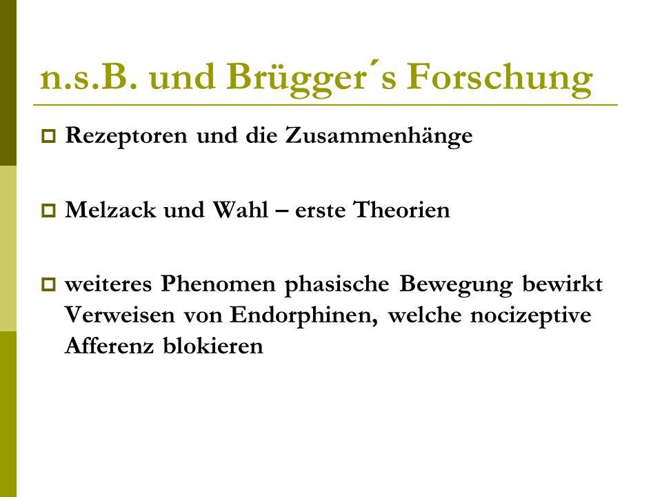 n.s.B. und Brügger´s Forschung