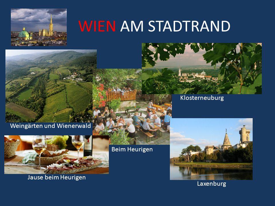 Weingärten und Wienerwald