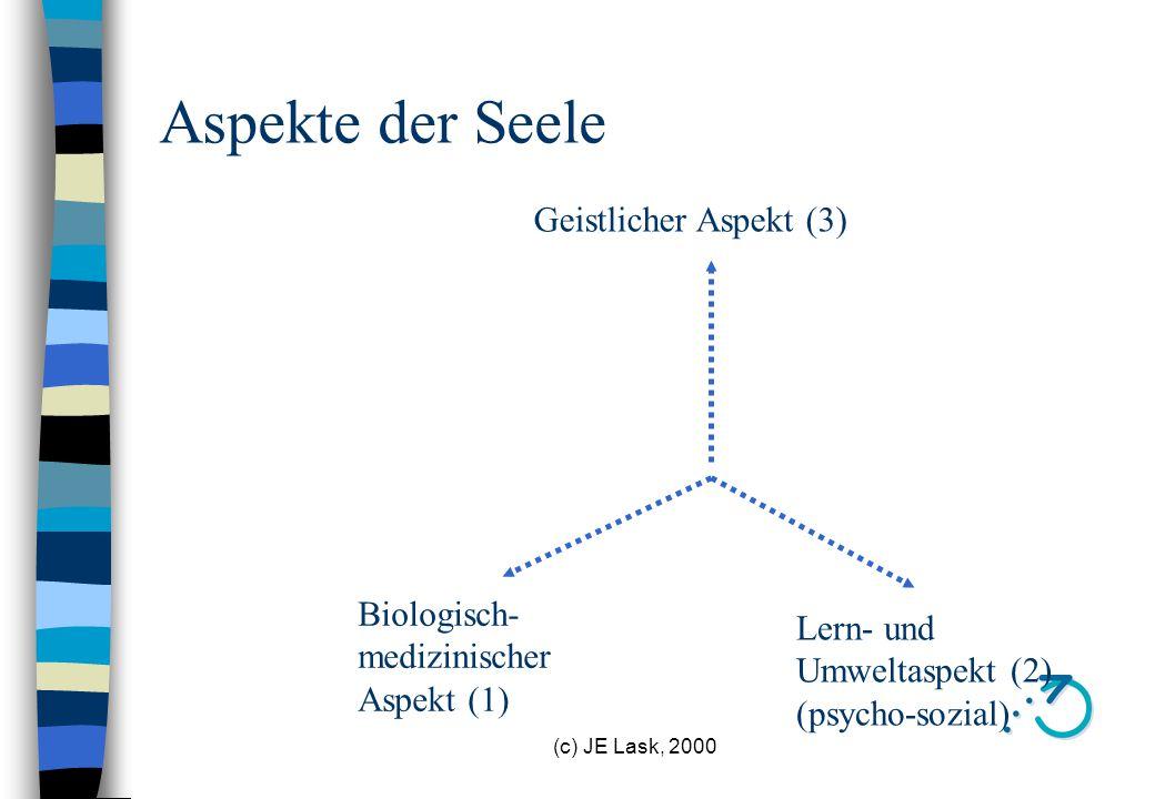 Aspekte der Seele Geistlicher Aspekt (3) Biologisch- medizinischer