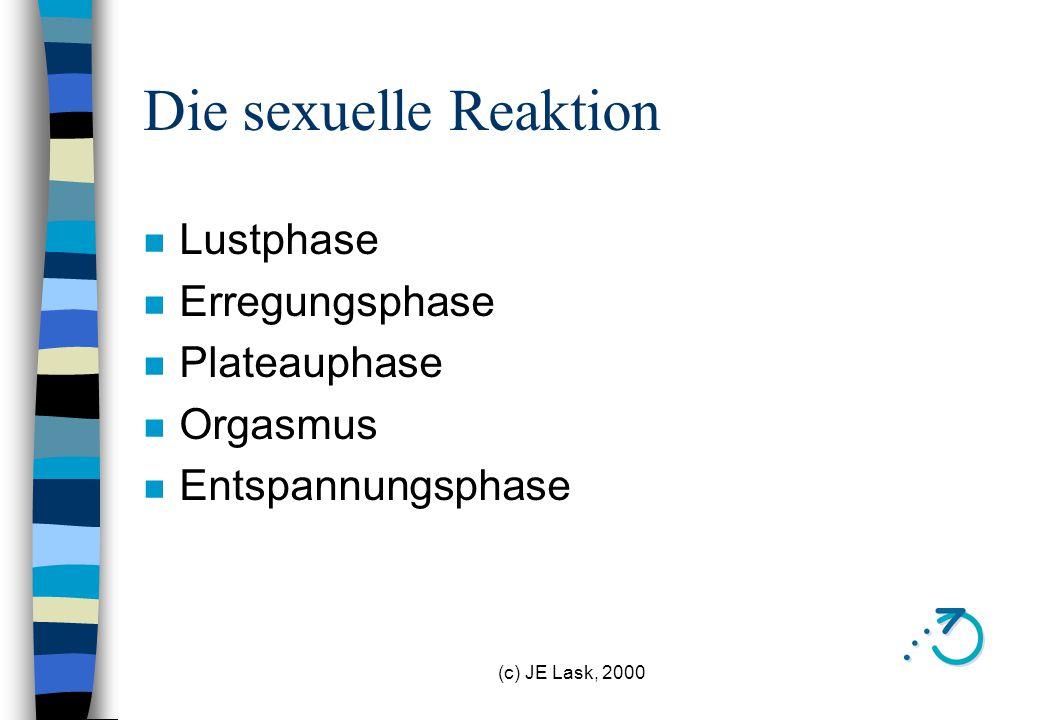 Die sexuelle Reaktion Lustphase Erregungsphase Plateauphase Orgasmus