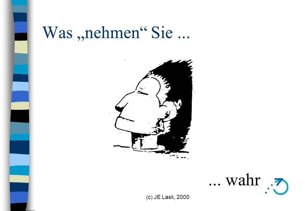 """Was """"nehmen Sie ... ... wahr (c) JE Lask, 2000"""