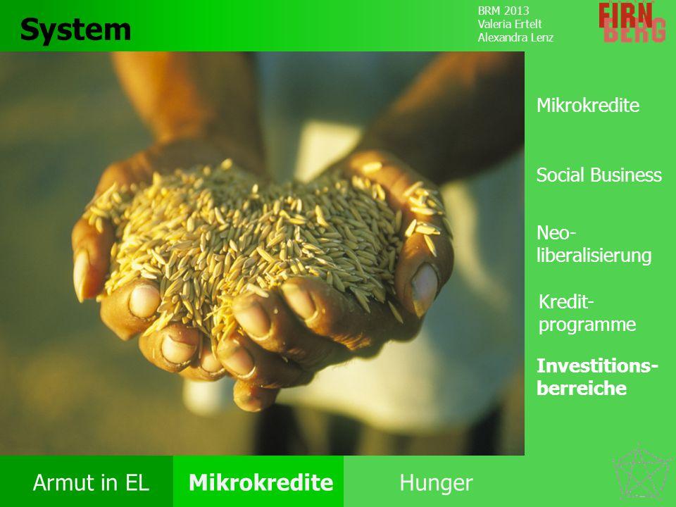 System Mikrokredite Social Business Neo- liberalisierung
