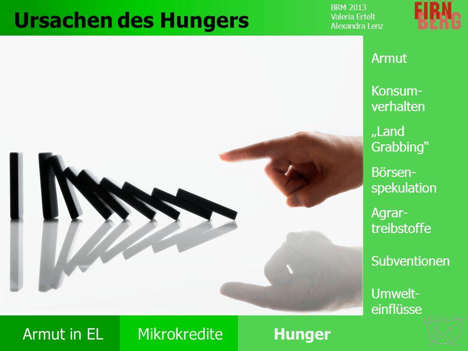 """Ursachen des Hungers Armut Konsum-verhalten """"Land Grabbing"""