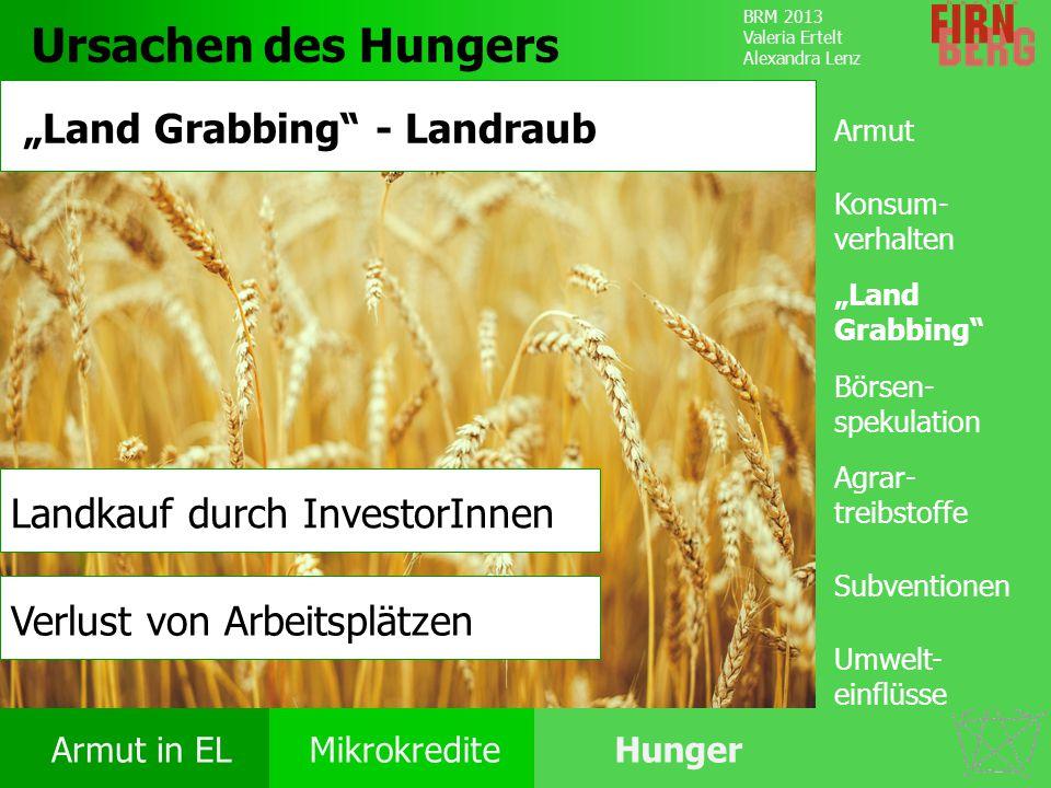 "Ursachen des Hungers ""Land Grabbing - Landraub"