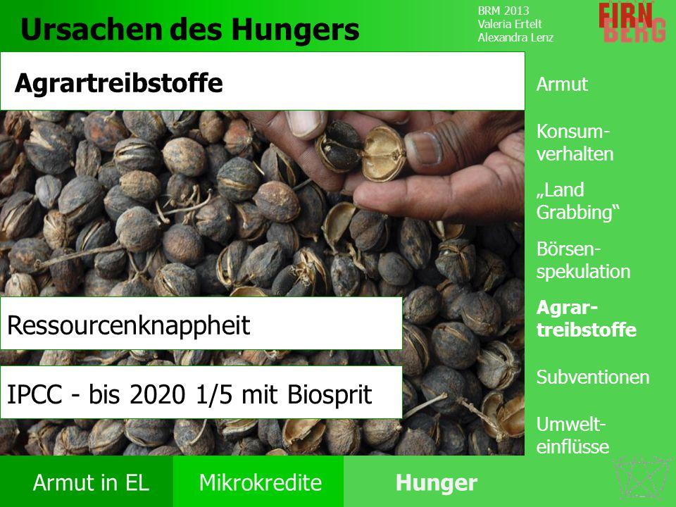 Ursachen des Hungers Agrartreibstoffe Ressourcenknappheit